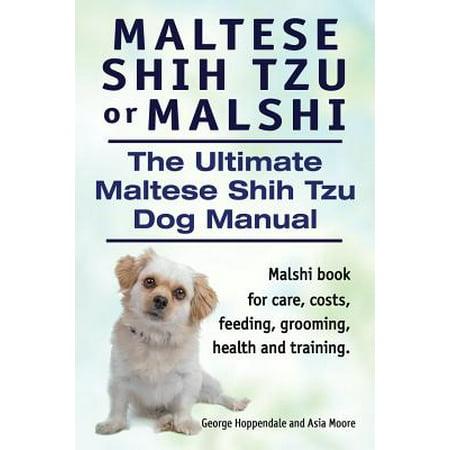 Shih Tzu Note Cards (Maltese Shih Tzu or Malshi. the Ultimate Maltese Shih Tzu Dog Manual. Malshi Book for Care, Costs, Feeding, Grooming, Health and Training.)