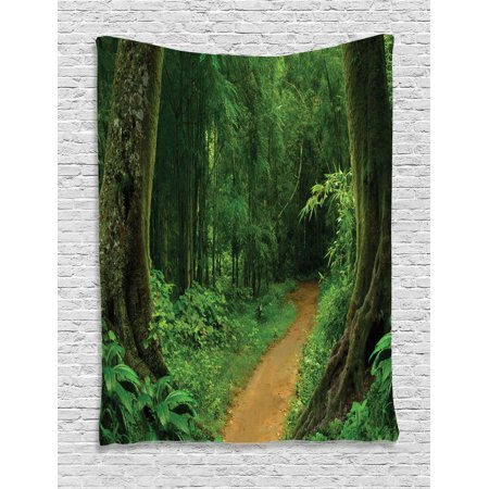 Tropical Decor Wall Hanging Tapestry, Tropical Jungle Forest With Trees Pathway Foliage Wilderness Nature Landscape Picture, Bedroom Living Room Dorm Accessories, By Ambesonne (Jungle Wall Tapestry)