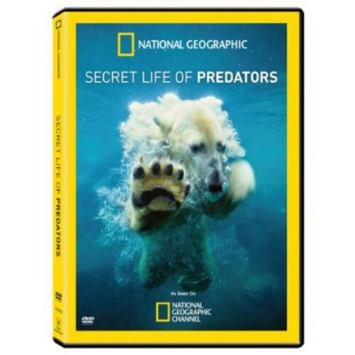 National Geographic: Secret Life Of Predators (Widescreen)