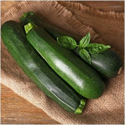 Packet of 70 Seeds, Black Beauty Zucchini, Summer Squash Seeds (Cucurbita pepo)