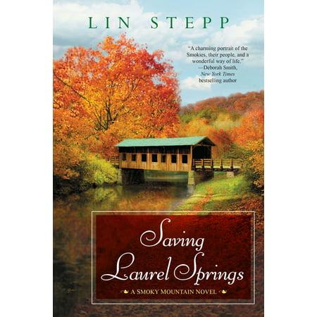 Saving Laurel Springs (Laurel Mountain Spring)