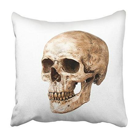 CMFUN Head Human Skull White Anatomy Bone Cranium Dead Death Front Halloween Pillowcase Cushion Cover 18x18 inch (Halloween Bones Clip Art)