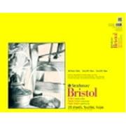 Strathmore 300 Series Binding Acid-Free Smooth Bristol Pad - 19 x 24 in. - 20 Sheets