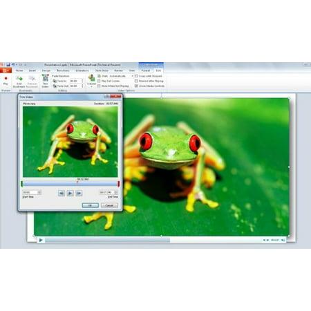 Microsoft PowerPoint 2010: The Unofficial Handbook - eBook ()