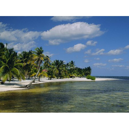 Main Dive Site in Belize, Ambergris Caye, Belize, Central America Print Wall Art By Gavin