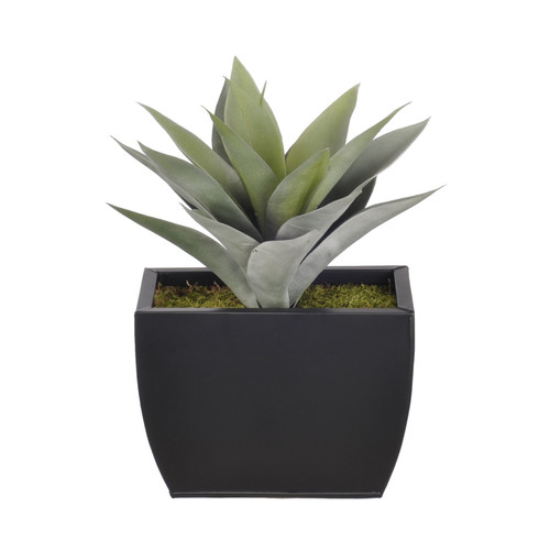 House of Silk Flowers Inc. Artificial Frosted Green Succulent Desk Top Plant in Decorative Vase
