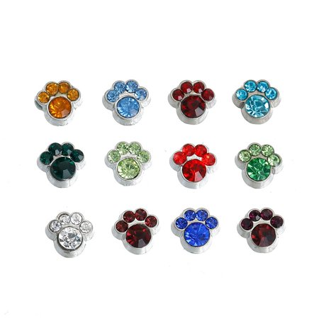 Sexy Sparkles 1 Pack of 12