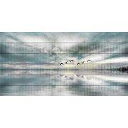 Parvez Taj Birds Skylight