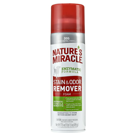 Nature's Miracle Dog Stain & Odor Remover Foam, 17.5 oz, For (Best Dog Stain Remover)