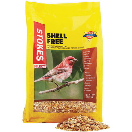 Red River Commodities 5lb Shell Free Seed 9267