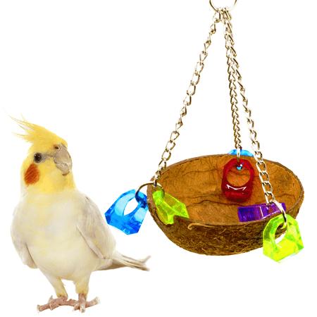 - Bonka Bird Toys 982 Coco Cup Bird Toy parrot cage toys conure amazon african grey lorie conure