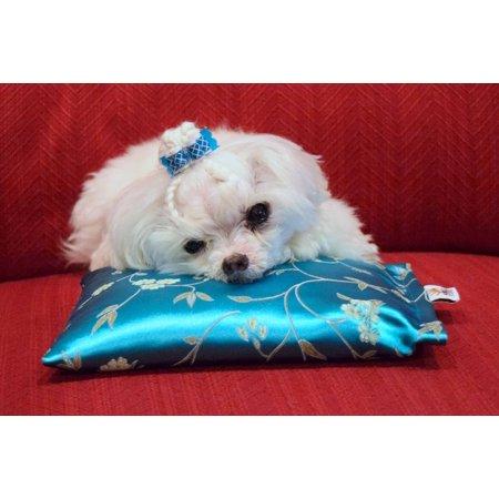 Aromatherapy Pillow Pet : Noble Slumber Calming Lavender Aromatherapy Pet Pillow with Oriental Satin Fabric - Walmart.com
