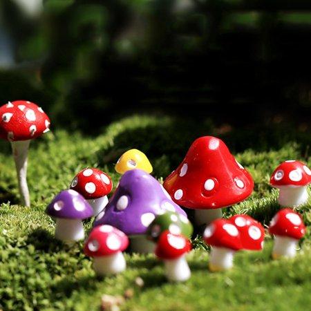 Heepo Miniature Mushroom Micro Landscape Bonsai Succulent Plants Mini Garden DIY Decor