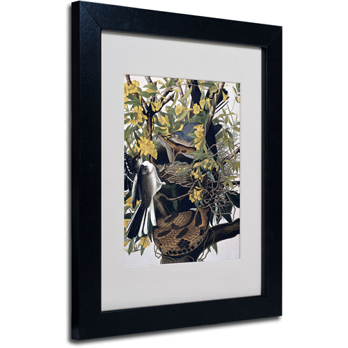 "Trademark Fine Art ""Mocking Birds and Snake"" Canvas Art by John James Audubon, Black Frame"