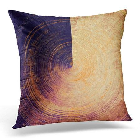 20x20 Worn Vintage Decorative Pillow Cover