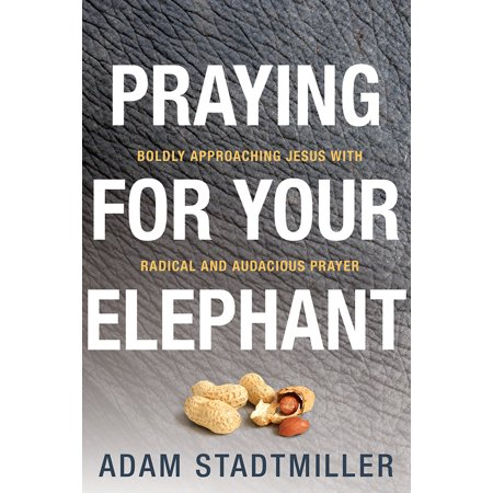 Praying for Your Elephant : Boldly Approaching Jesus with Radical and Audacious