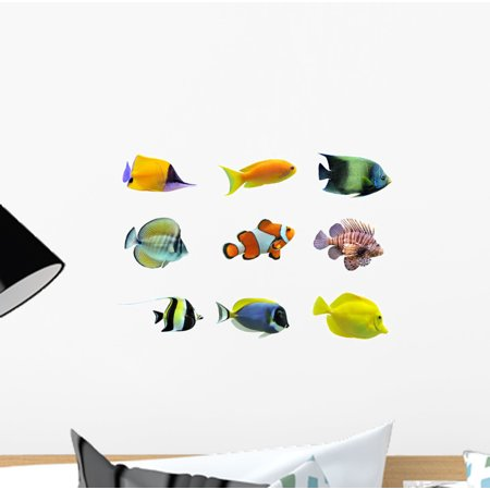 Fish Decal Set - Set Tropical Fish Wall Decal by Wallmonkeys Peel and Stick Graphic (12 in W x 9 in H) WM53070