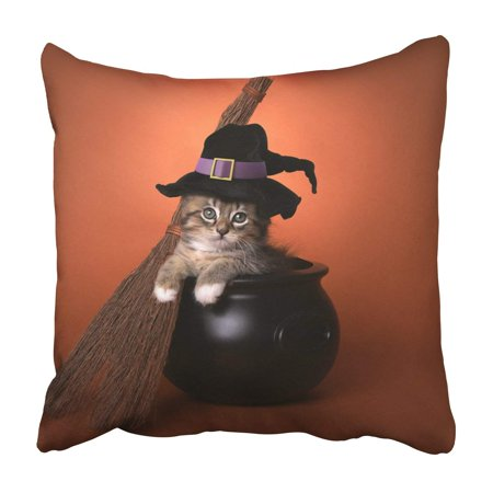 BPBOP Funny Halloween Witch Themed Kitten Pillowcase Throw Pillow Cover Case 18x18 inches - Halloween Theme Piano Cover