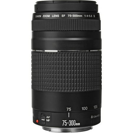 Canon EF 75-300mm f/4-5.6 III Telephoto Zoom Lens for Canon SLR (Best 75 300 Lens For Canon)