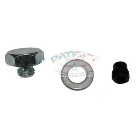 Furnace Cleaning Kit - Riello C7001018 Capillary Port Plug Kit for F3-F15 Oil Burners