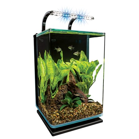 Marineland Contour Glass Aquarium Kit with Rail Light,