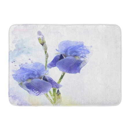 GODPOK Bud Blue Bloom Digital Painting of Iris Flowers Purple Blossom Flora Rug Doormat Bath Mat 23.6x15.7 inch Planting Iris Flowers