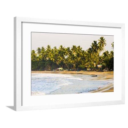 Mirissa Beach at Sunset, South Coast, Southern Province, Sri Lanka, Asia Framed Print Wall Art By Matthew (Nitro Cars For Sale In Sri Lanka)