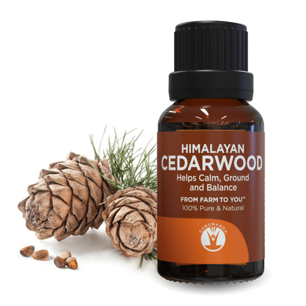 Gurunanda Himalayan Cedarwood Essential Oil, 0.5 Oz