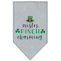 Mister Pinch Charming Screen Print Bandana White Small
