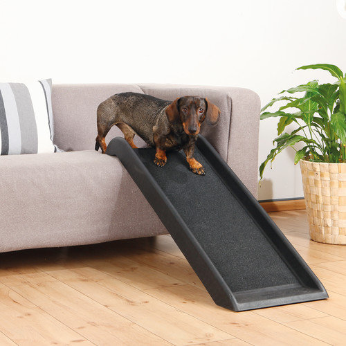 Trixie Pet Products Safety 39'' Pet Ramp
