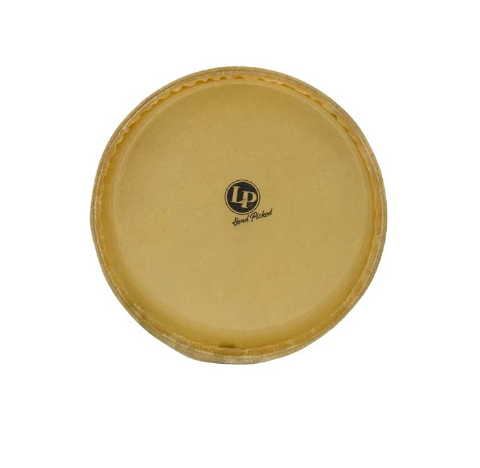 Latin Percussion LPA640B Aspire Series 11� Replacement Conga Head by LP