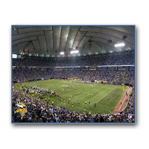 Minnesotta Vikings Stadium 22X28 Canvas Art