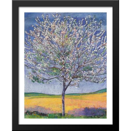Cherry Tree in Bloom 28x34 Large Black Wood Framed Print Art by Ferdinand Hodler ()