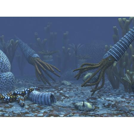 Squid-like Orthoceratites attempt to make meals of trilobites Canvas Art - Walter MyersStocktrek Images (17 x 13)