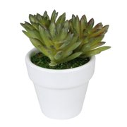 """4"""" Potted Artificial Green and Red Spring Succulent Arrangement"""