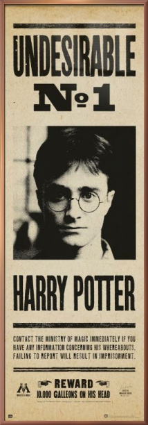 "Harry Potter Door Movie Poster   Print (Undesirable No. 1) (Size: 21"" x 62"") by"