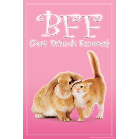 Bff Best Friends Forever Bunny Kitten Rabbit Cat Cute Print Poster   12X18