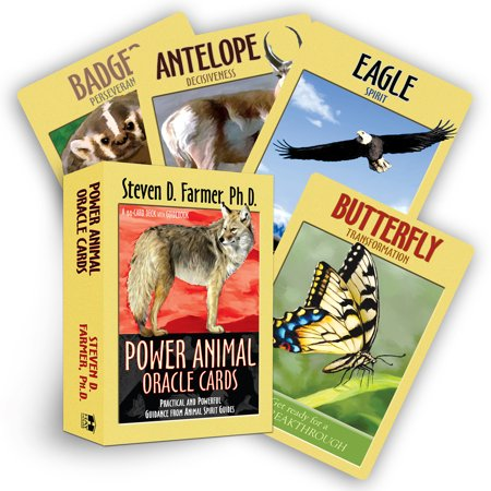 Power Animal Oracle Cards : Practical and Powerful Guidance from Animal Spirit