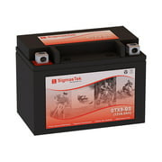 Honda TRX250EX, Sportrax, 2001-2008 Motorcycle Battery (Replacement)