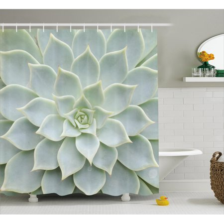 Cactus Shower Curtain, Cactus Plant Flower Close Up View Photo Image Desert Mexican Hot Natural Plant Artwork, Fabric Bathroom Set with Hooks, Green, by Ambesonne ()