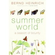 Summer World - eBook