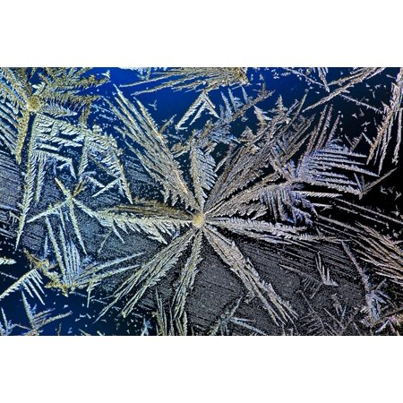 Extreme Close Up Of Frost Crystal With Colourful Lighting Calgary Alberta Canada Stretched Canvas - Michael Interisano  Design Pics (20 x (Indian Stores Calgary)