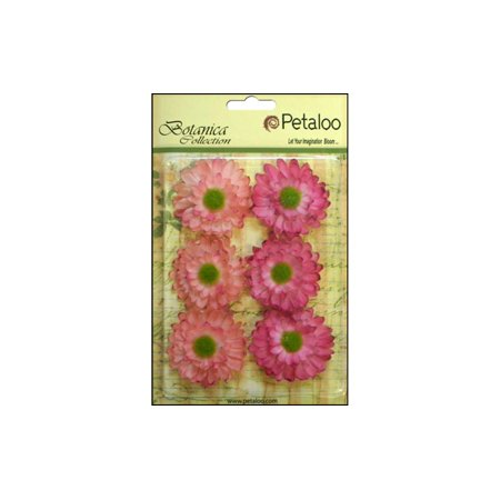 Hot Pink Gerber Daisy (Petaloo Botanica Gerber Daisy Light)