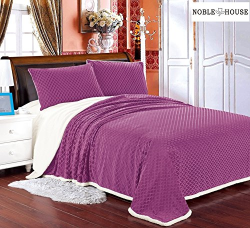 Cozy Living Ultra Soft Reversible Queen Blanket with Sherpa Lining - Mauve