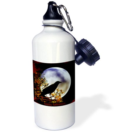 3dRose A moon with crow halloween design, Sports Water Bottle, 21oz ()
