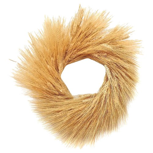 Dried Flowers and Wreaths LLC 22'' Wheat Wreath