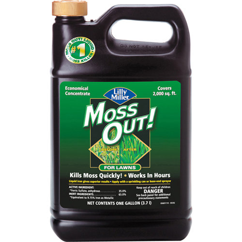 Lilly Miller Moss Out! Economical Concentrate for Lawns Moss Killer, 1 gal