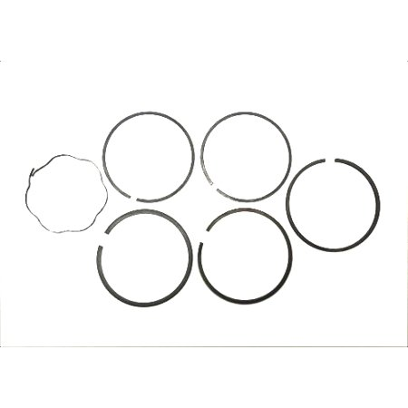 BS-298745 BRIGGS RING SET-STD CHR 298745 Briggs & Stratton