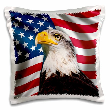 3dRose American Flag USA Bald Eagle Patriotism Patriotic Stars Stripes - Pillow Case, 16 by 16-inch](Patriotic Pillows)