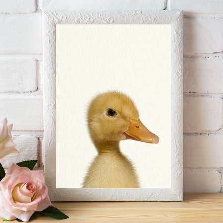 Baby Farm Duck - Nursery Wall Décor Farm Baby Animal Art Print